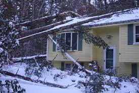 winter weather damage