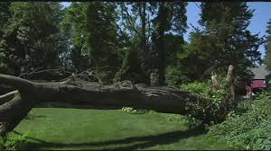 storm damage in the mid-atlantic